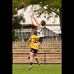 u18sf-09.jpg by Insanity Multimedia