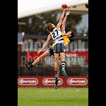 u18sf-26.jpg by Insanity Multimedia