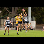 u18sf-41.jpg by Insanity Multimedia