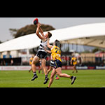 u18sf-46.jpg by Insanity Multimedia