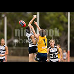 u18sf-73.jpg by Insanity Multimedia